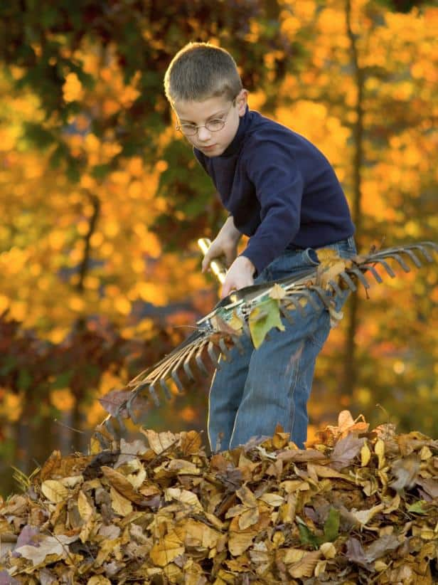 Fall yard maintenance is just as important as fall home maintenance!